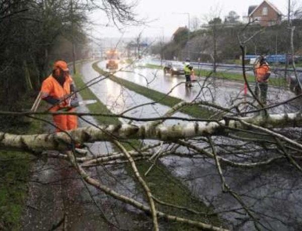 Avstraliyada şiddətli fırtına: 60 min ev elektriksiz qaldı